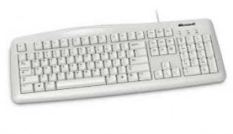 Clavier Microsoft Wired Keyboard 200 - Blanc